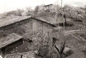kmetija Fornazarič